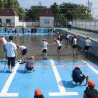 プール清掃 群馬県 小学校