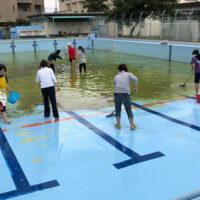 プール清掃 神奈川県 小学校